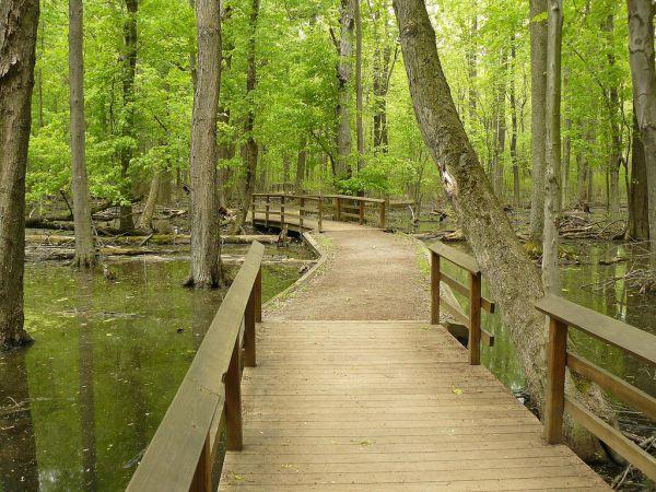 tinker-nature-park