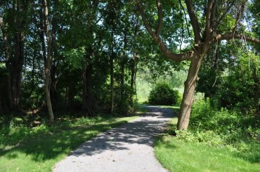 There are literally miles of sidewalks and maintained trails to enjoy throughout the community.