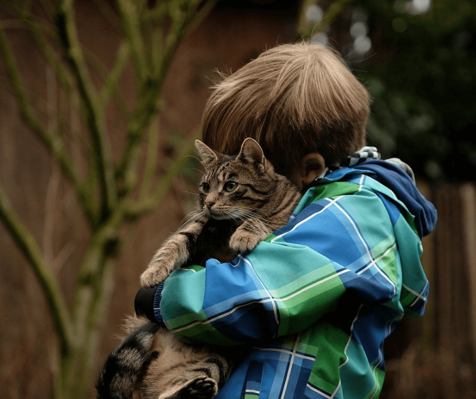 Young boy holding a cat